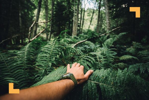 La aventura te espera en Costa Rica